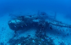 The next photo session ended with the discovery of an underwater cemetery of aircraft