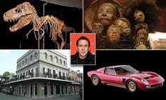 Скелет тиранозавра и высушенные головы пигмеев — необычные экспонаты из коллекции американского актера