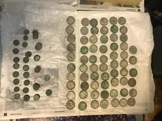 On the territory of the Kiev reserve found 2 kg of silver coins