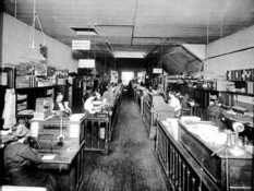 Office plankton of the early 20th century