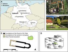 Німецькі археологи провели дослідження зубного каменю і отримали сенсаційні результати