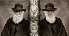 Darwin's father believed his son would be a disgrace to the family