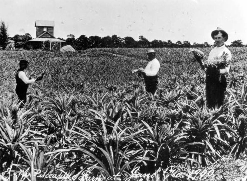 Что означал договор о передаче Флориды США?