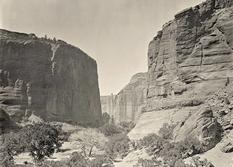Яким був Дикий Захід 150 років тому: добірка фото