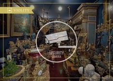 Як убезпечити свою колекцію від злодійства?