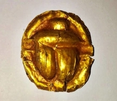 The golden scarab beetle and the coin of the Ptolemaic epoch is another valuable discovery by archaeologists of Egypt
