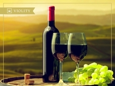 A complete guide to wine bottle sizes for wine collectors