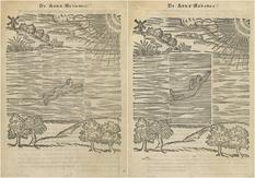 Это издание более 300 лет оставалось лучшим пособием по плаванию