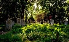 Как было найдено старейшее еврейское захоронение в Великобритании?