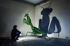 Гігантські бджоли, мухи і павуки на стінах покинутих будівель