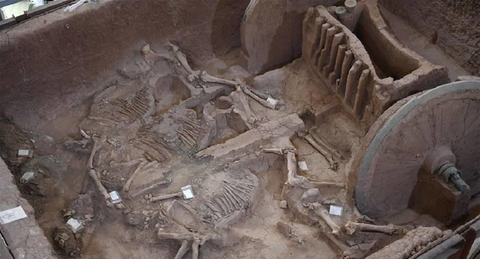 В Китае из найденных фрагментов восстановили древнюю колесницу