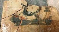 В старинном львовском доме найдены редкие изразцы
