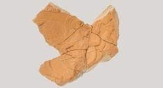 В Болгарии найден фрагмент рельефа с изображением греческих воинов