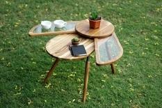 Крылатый стол сконструировала дизайнер из Индии (Фото)