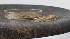 Датская студия разработала табурет из остатков зерен