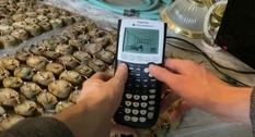 «Батарейка» из картошки и калькулятора: ютуберы показали, как можно добыть энергию для игры (Видео)
