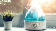 Эксперты рассказали, на что нужно обратить внимание при выборе увлажнителя воздуха