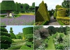 Сад Левенс Холл: ОХО вспомнил наивысшее мастерство ухода за садово-парковыми растениями (Фото)