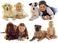 Дети и собаки: веселый фотопроект