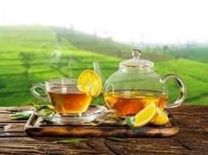 Любители чая реже страдают болезнями сердца и сосудов — ученые