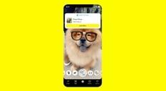 Определение видов растений и пород собак — новые функции Snapchat