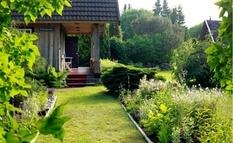 Высокая изгородь и темное стекло — отличное место для самоизоляции в Эстонии (Фото)