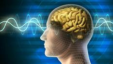 Избыток кислорода влияет на активность мозга — исследование