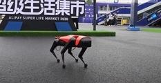 Собака, которую не нужно выгуливать: китайцы протестировали нового робота