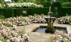 Ландшафтные дизайнеры рассказали о правилах сооружения фонтана