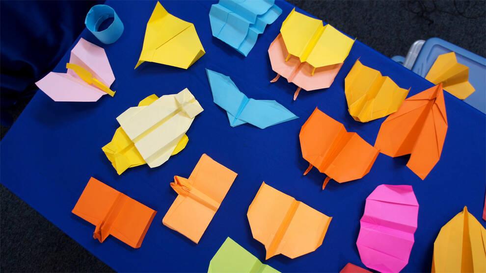 Чемпионское оригами: рекордсмен книги Гиннесса показал, как сделать бумажный самолет