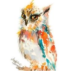 Owls watercolor by Magdalena Zolnierowicz