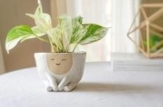 Милые горшочки для растений