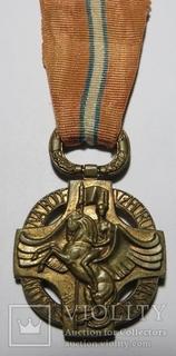 Чехословацкая революционная медаль, 1918 года.