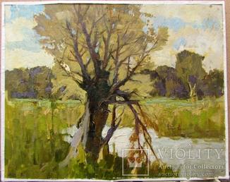 "Cербутовский А.А. ""Старе дерево"" 22.5*28,5 см"