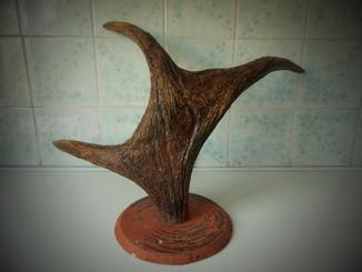 Рог лося, 1800 гр.