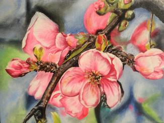Картина маслом 30х40 Цветение яблони