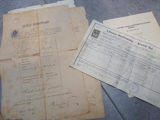 Дипломы + аттестаты + свидетельства 1880-1940гг