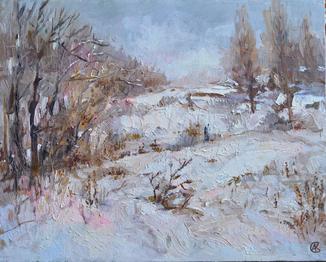 Зима на Алексеевке