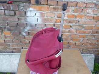 Дорожня сумка або сумка для закупок з Німеччини