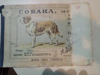 Собака её строение и внутренние органы 1900 год. с картинах с кратким текстом.