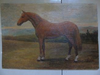Призовая лошадь