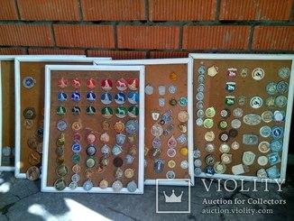 Коллекция кинологические жетоны, знаки.