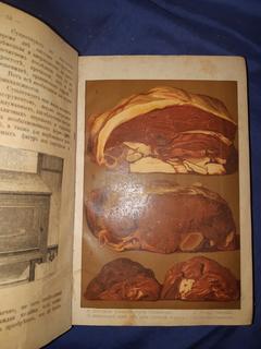 1900 Образцовая кухня в 2 частях