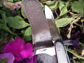 Складной Нож СССР Ворсма, не точеный , новый , с чехлом