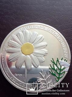 1000 Драм Серебряная Юбилейная Монета Армении