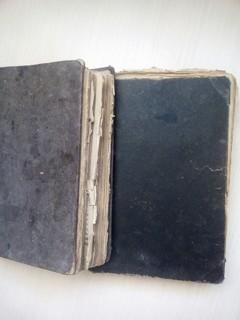 Польские книги 1917 года
