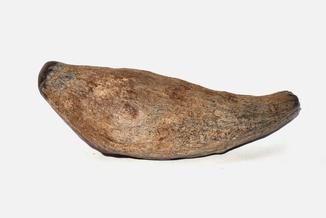Крупний зуб зубатого кита Scaldicetus 19 см