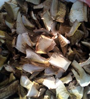 Белые грибочки свежевысушенные всего 300 гр.