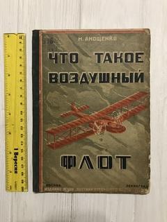 1925 Воздушный флот, Авиация, Пропаганда СССР