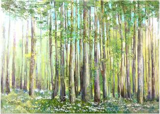Весенний лес в цветах